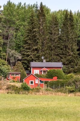 Trivsamt hus vid skogens slut, liten hare tittar fram !